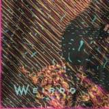 Wilde_01_1-copy_07